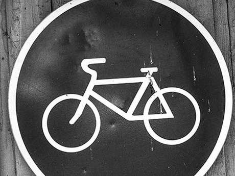 Patrimoine mégalithique à vélo
