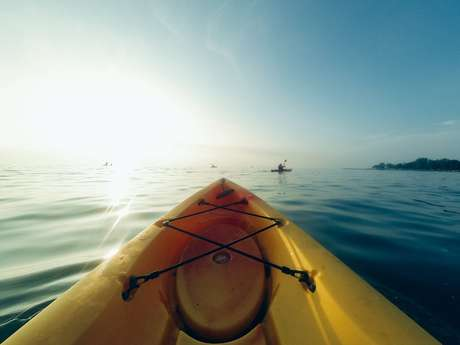 Sortie nature en kayak.