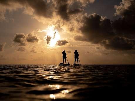 Sortie nature en paddle.