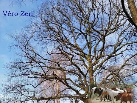 Véro Zen