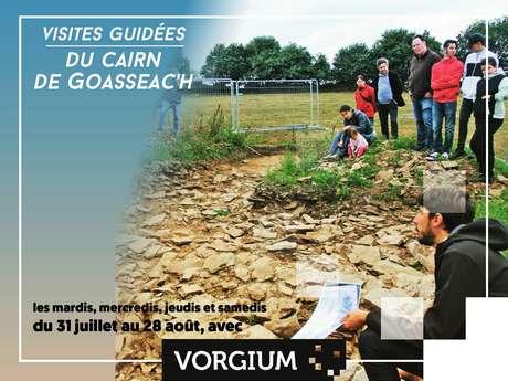 Visites guidées du chantier archéologique du cairn de Goasseac'h