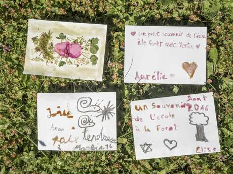 Atelier Nature pour les 7-10 ans : Encres végétales