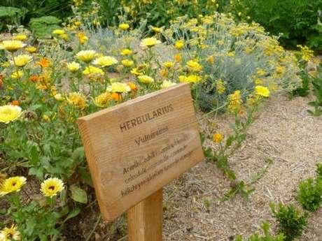 Visite du jardin médiéval Saint Jean