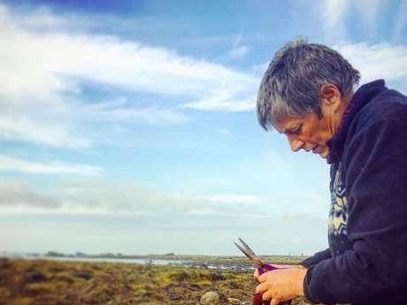 Initiation et découverte des végétaux marins sur l'estran avec Scarlette Le Corre