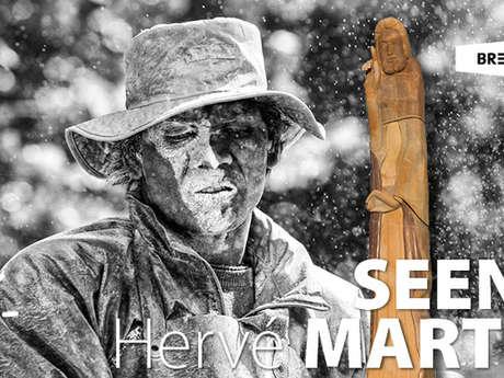 Exposition - SEENU et Hervé MARTIN - ANNULÉ