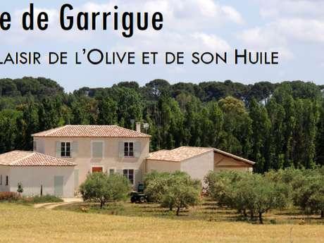 FINE DE GARRIGUE - FAMILLE PURSEIGLE - DOMAINE DE GALINENQUE