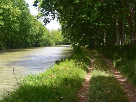 LE CANAL A VELO : QUARANTE - CAPESTANG