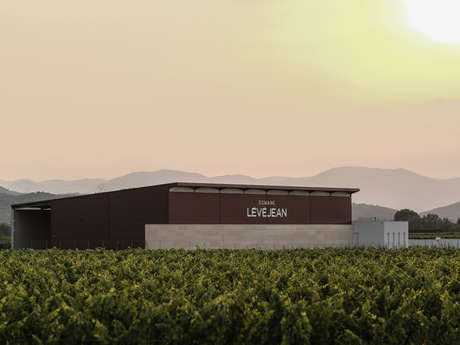 DOMAINE LEVEJEAN