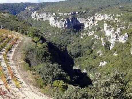 GRANDE TRAVERSEE DE L'HERAULT - MINERVE/SAINT-JULIEN-DES-MEULIERES (ITINERAIRE SUD)