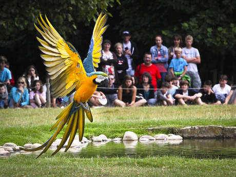 Parc de Branféré - Parc animalier, botanique et Parcabout®