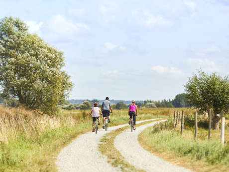 Balade à vélo à Saint-Malo : Sur les pas de Jacques Cartier