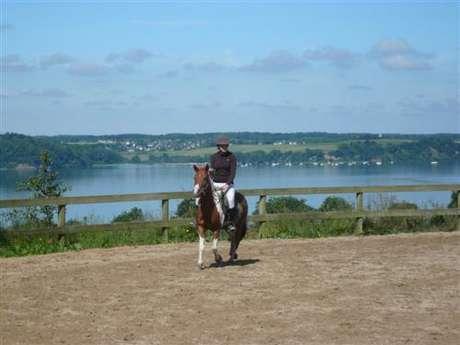 Centre Equestre et Poney Club Les Ecuries des Perrières