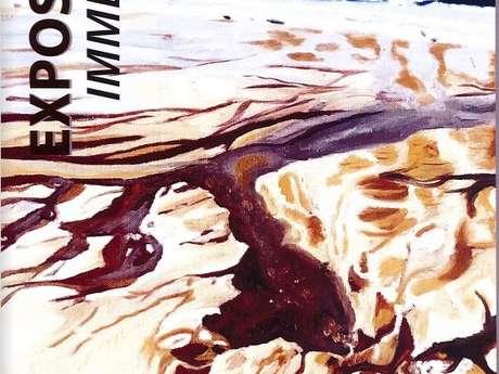 Immersion - Sylvie Romet-Haddad