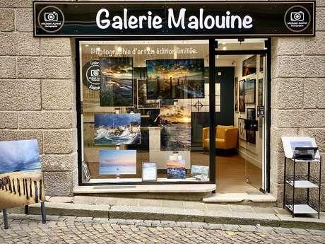 GALERIE MALOUINE