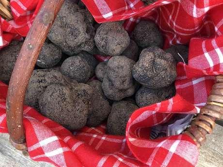 Truffes Noires de Montcuq
