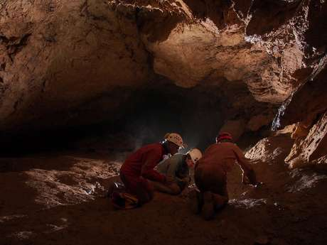 ANNULE- La Microfaune Souterraine des Causses du Quercy