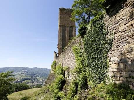 Tisser La Nature : Visite Atelier