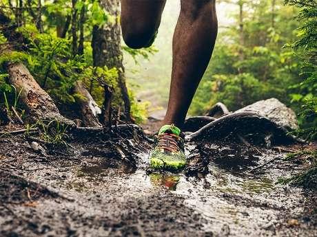 Trail, VTT et Marche à Pied en Nocturne