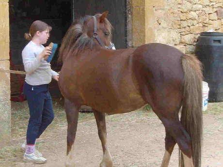 Centre Equestre d'Irina
