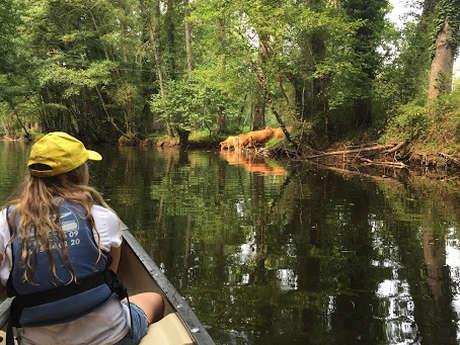 Guide de rivière nature en canoë