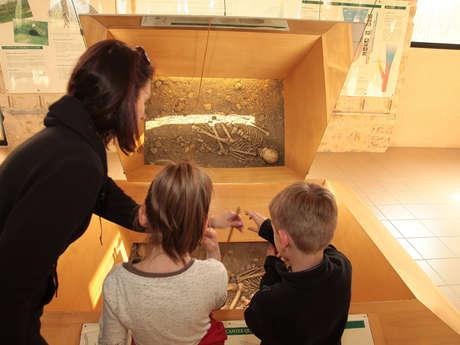 """Musée de l'Homme de Neandertal """"Jean Bouyssonie"""""""
