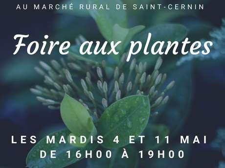 Foire aux plantes au marché rural de Saint-Cernin