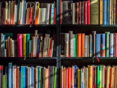 """Atelier """"Analyser et Présenter un Roman ou une BD"""""""