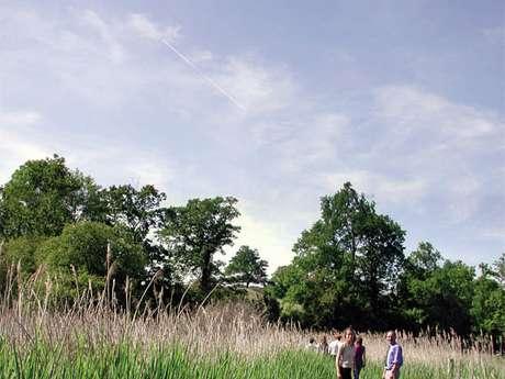 Le Marais de Bonnefont
