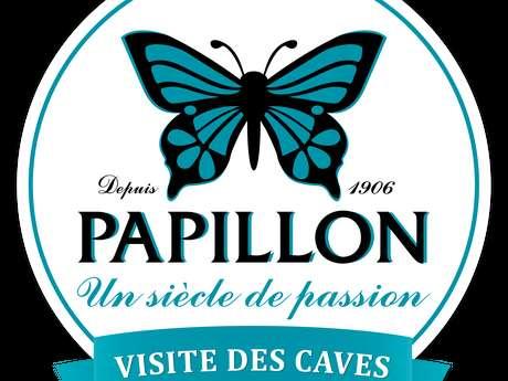 VISITE CAVES ROQUEFORT PAPILLON