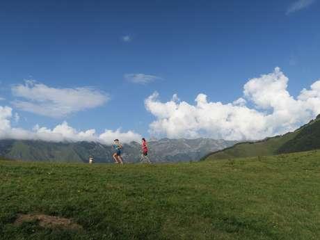 N° 24 Trail de Bergout