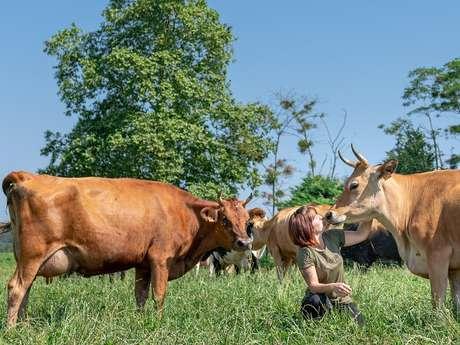 Ferme des vaches
