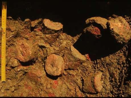 Journées du Patrimoine : La salle du Livre noir et ses collections archéologiques