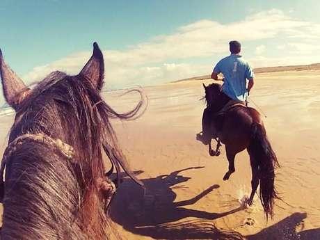 Centre Equestre Le Corral