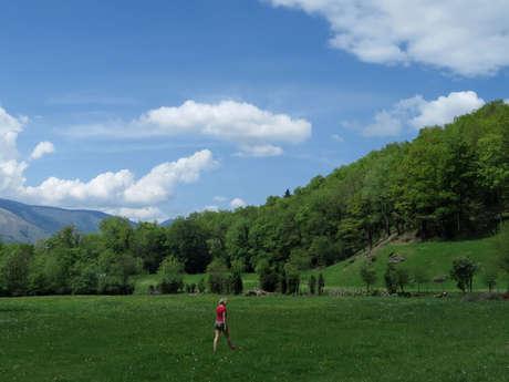 N° 28 Chemin d'Aulet