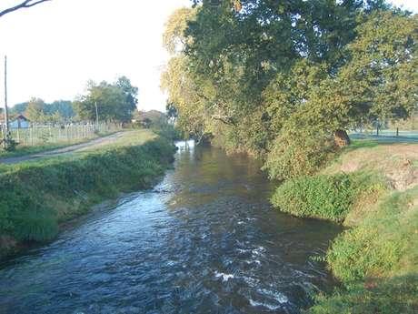 A Saint-Julien-en-Born, circuit du ruisseau du Courlis
