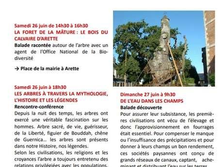 Journées du patrimoine de pays et des moulins - Le bois du calvaire d'Arette