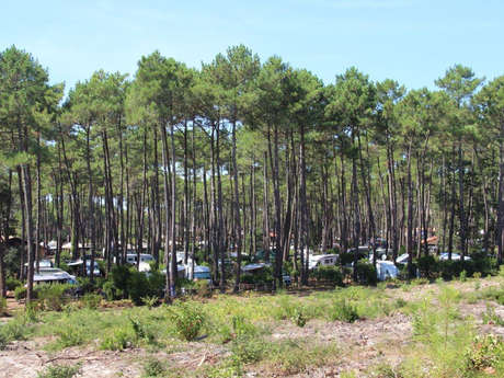 Aire de camping-cars du Cap de l'Homy