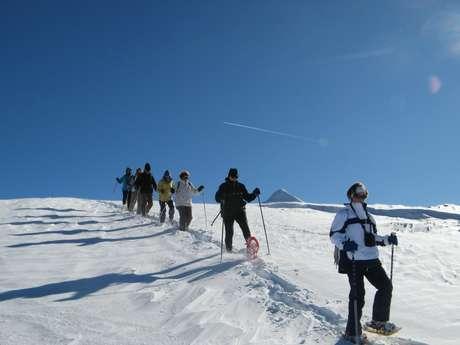 Sortie raquettes à neige en Pyrénées béarnaises