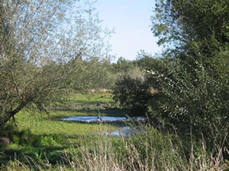 Le Domaine du Petit Bois