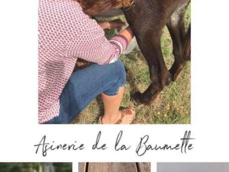 Asinerie de la Beaumette