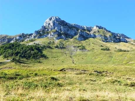 Boucle du Montagnon de Bielle au plateau du Benou en Vallée d'Ossau