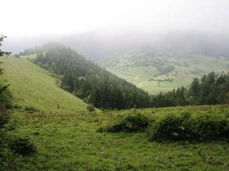Boucle de Lazerque à Iseste en Vallée d'Ossau