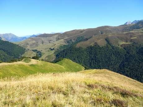 Boucle du Pic d'Auzu à Aste-Béon en Vallée d'Ossau