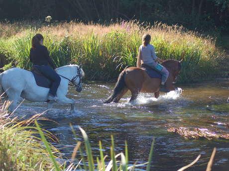 Centre Equestre Les Centaures