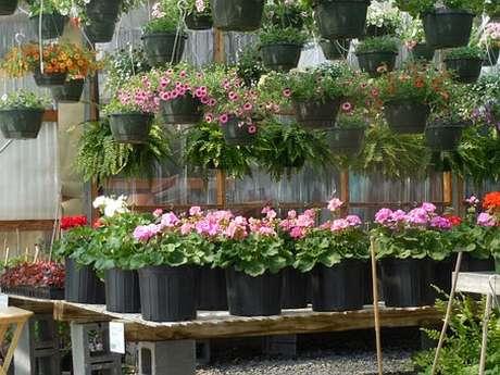 ANNULÉ : Jardin partage