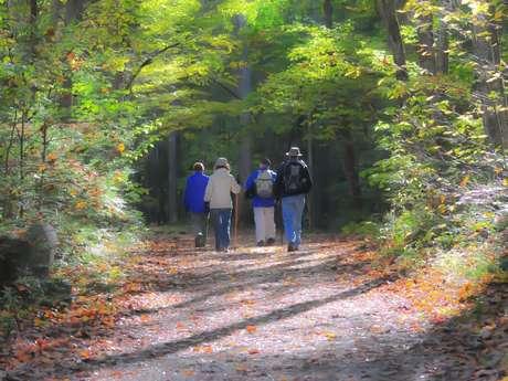 Marche les Trotte Sentiers de Chalosse