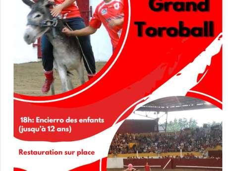 Grand Toroball