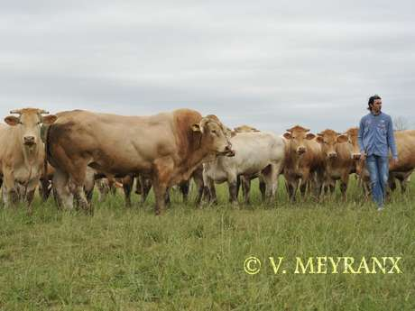 Visite de la ferme Gardelly