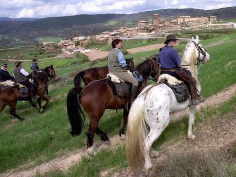 Monsieur Eric BONNEMAZOU - Accompagnateur Equestre