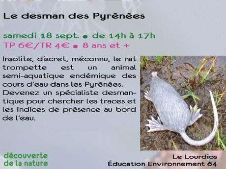 Le desman des Pyrénées - sortie CPIE